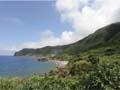 蘭嶼巴漾民宿