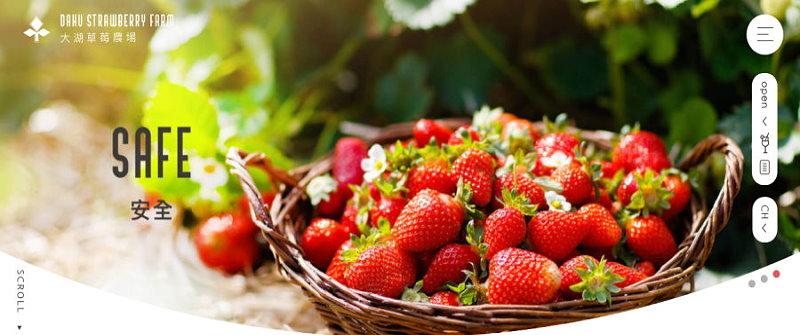 苗栗美食‧大湖草莓農場